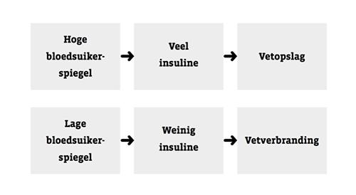 Cortvriendt-over-insuline