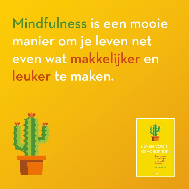 Mindfulness maakt leven makkelijker